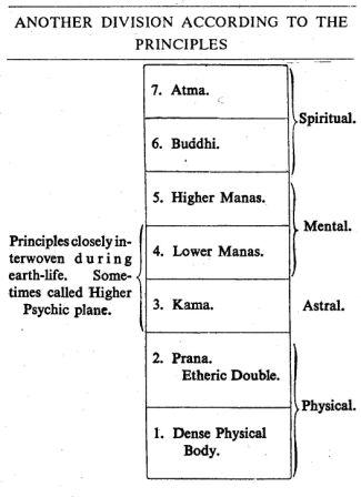 7 principles a