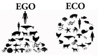 eco or ego